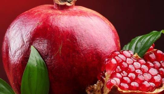 التغذية و الطب البديل