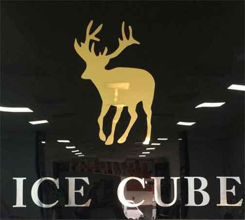 Ice Cube   جبلة اللاذقية