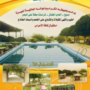 مطعم ومسبح القناطر الذهبية دوير الشيخ سعد  طرطوس
