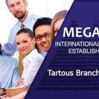 مؤسسة ميغا سوفت الدولية للتدريب فرع طرطوس